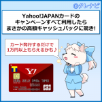 [2017年12月]Yahoo JAPANカードのキャンペーンすべて利用したらまさかの20,798円キャッシュバック!